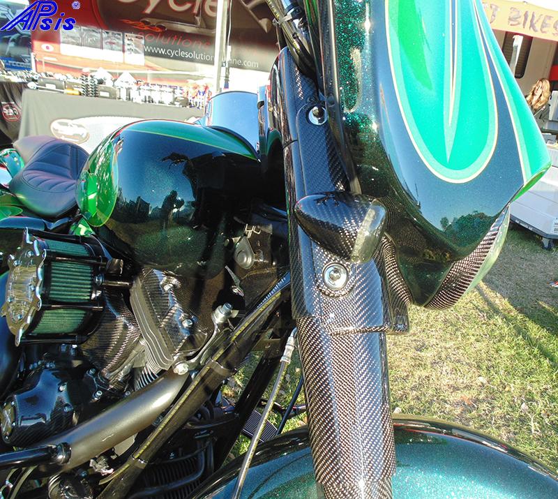 Chris bike at daytona-front turn signal+mount-1